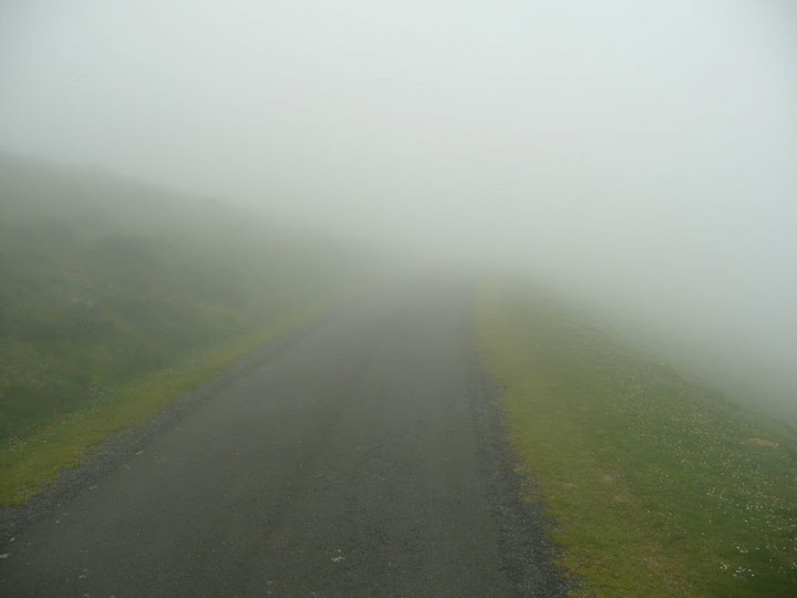 Into the fog