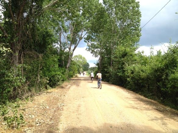 Biking near the shores of Lago Trasimeno